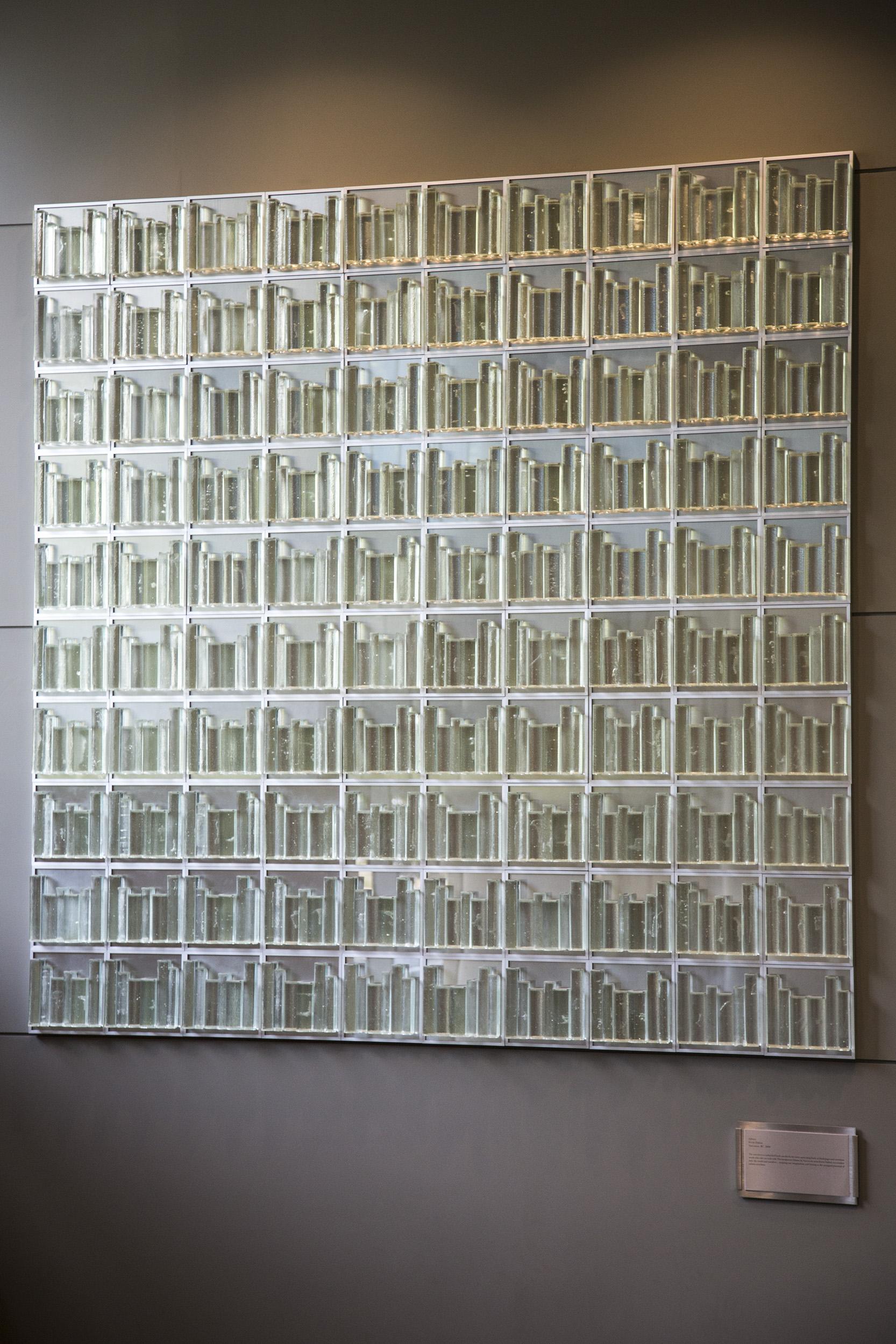 IMG_6166_GlassBookcases